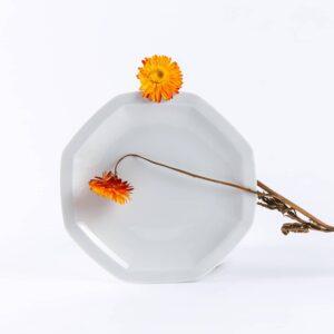 assiette octogonales en porcelaine blanche française. 19cm