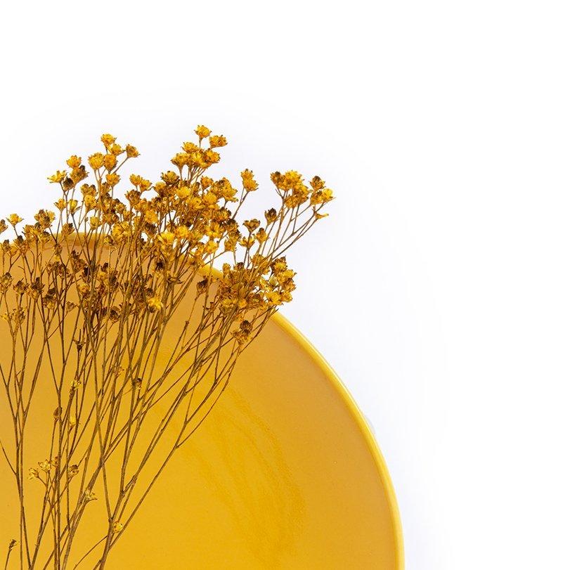 assiette en porcelaine jaune française